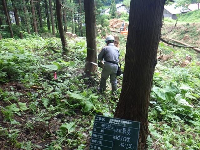 森林事業の施工例